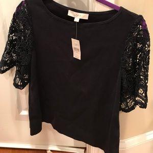 Ann Taylor Loft Short Sleeve Sweater